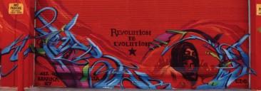 Revolution is Evolution