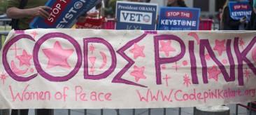 Code Pink Banner