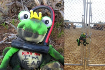 Frogs in Action Against Tar Sands!