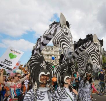 Climate Justice Zebras