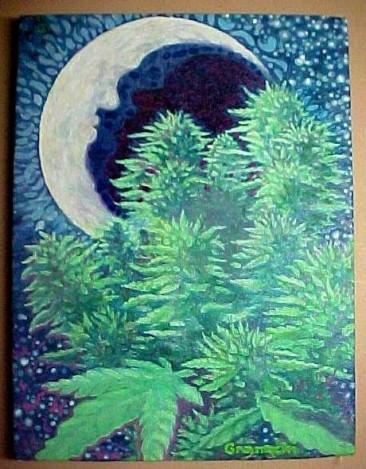 Moonlight Mojo