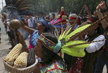 Protecting Indigenous Corn Genetics