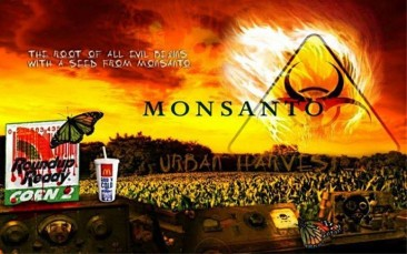 A Seed From Monsanto