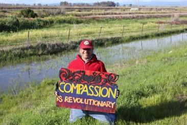 Compassion is Revolutionary