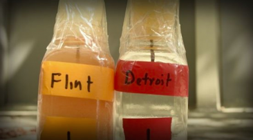Solidarity Statement with Flint, Michigan
