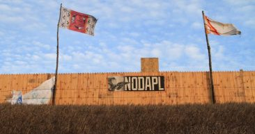 Updates from the #NoDAPL Movement at Standing Rock