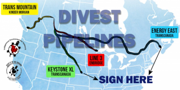 Get The Banks To Divest